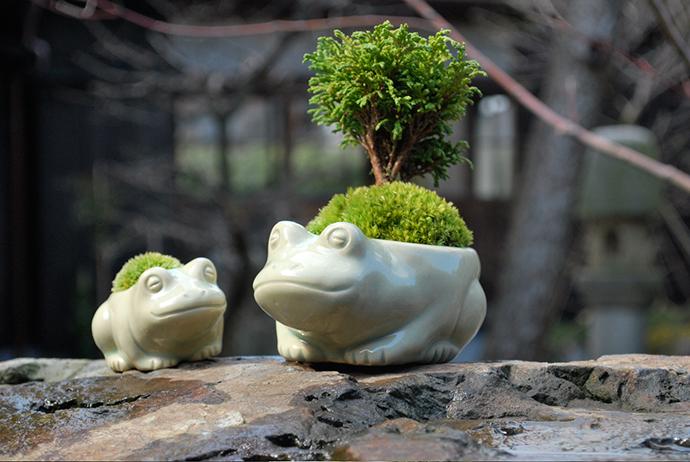 池田早季恵展 陶と苔