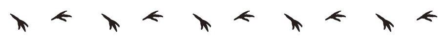 dododo 足跡