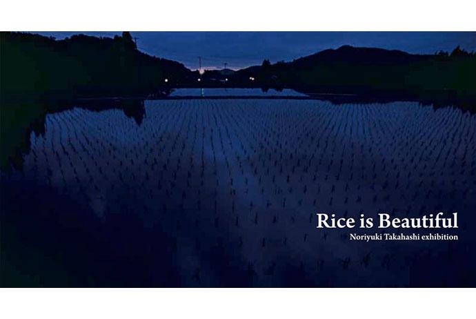 髙橋ノリユキ写真展「Rice is Beautiful」
